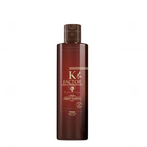 K Factor Therapy Shampoo