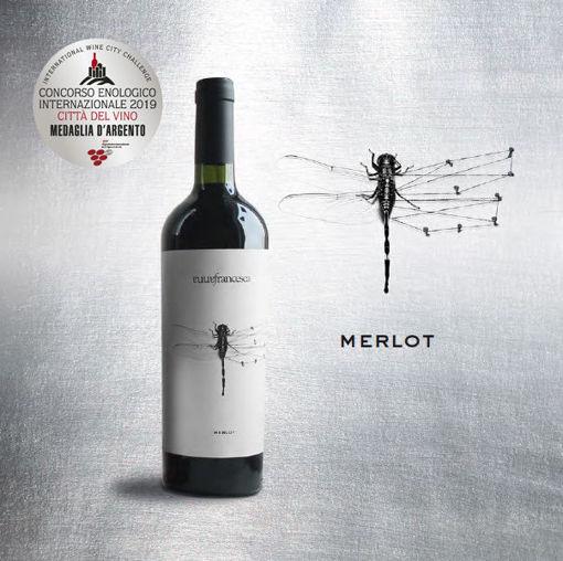 Libellula Merlot int 2018 Annafrancesca