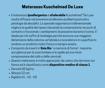 Immagine di Materasso Kuschelmed De Luxe 80x190