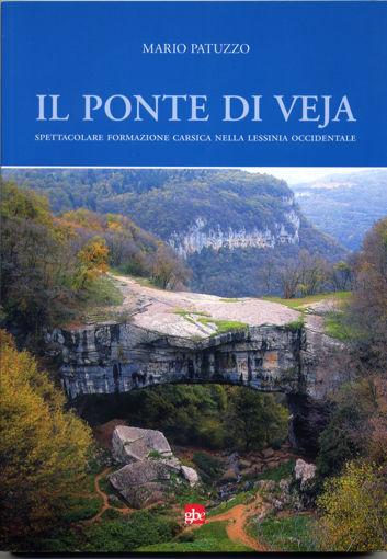 """Libro """"Il ponte di Veja"""" di Mario Patuzzo"""