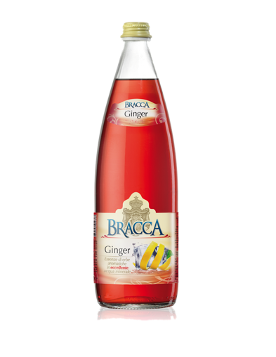 Bracca - Bibita Ginger (12 bt)