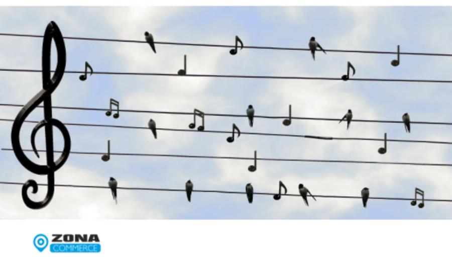 Audio & Musica