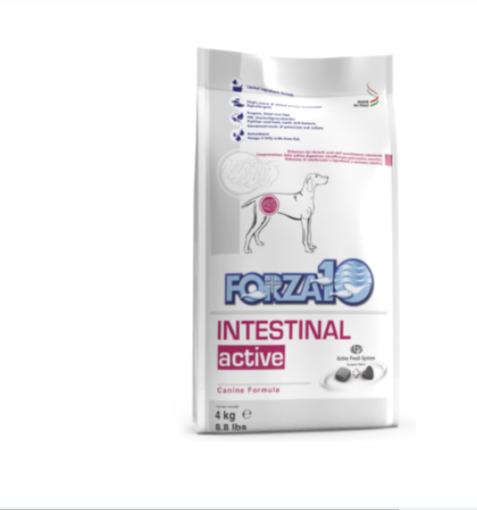 Active Intestinal 4 Kg Forza 10