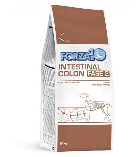 Forza 10 Intestinal Colon Fase 2 10 Kg