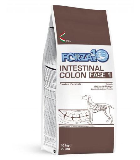 Forza 10 Intestinal Colon Fase 1 10 Kg