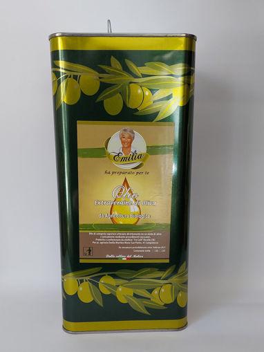 Olio Extra Vergine di Oliva Bio 3 L